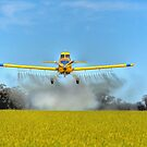 Crop Duster by Leigh Monk
