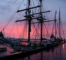 Seafaring Hobart by Odille Esmonde-Morgan