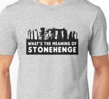 What's the meaning of stonehenge ? Unisex T-Shirt