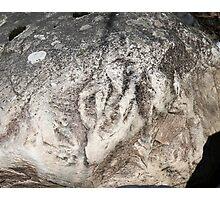 Stone Wolf Photographic Print