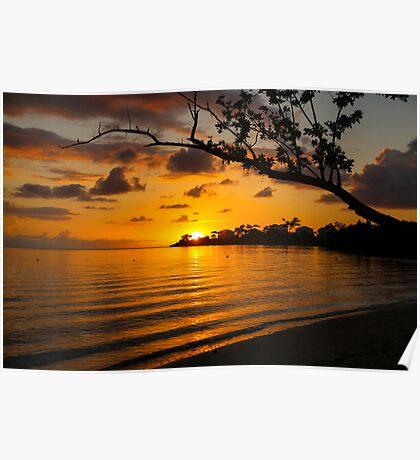 Jamaican Sunset Poster