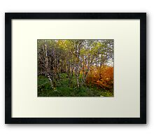 Open Up Your Eyes Framed Print
