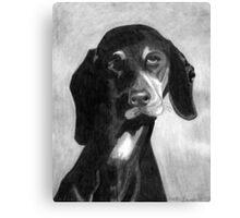 Black Forest Hound Dog Portrait  Canvas Print