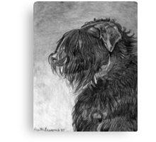 Black Russian Terrier Dog Portrait  Canvas Print