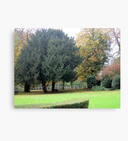 the lovely colours of autumn Canvas Print