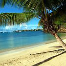 Calabash Beach by John Dalkin