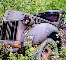 Antique Truck by tjkphotos