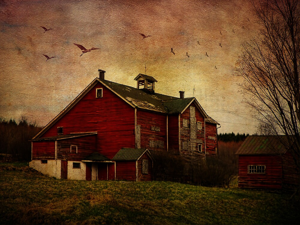 Flight Over the Barn by PineSinger
