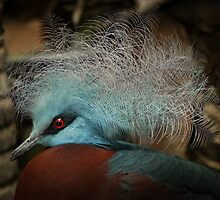 Victoria Crowned Pigeon in tribal decor by steppeland