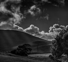 Plough Fell by Alan E Taylor