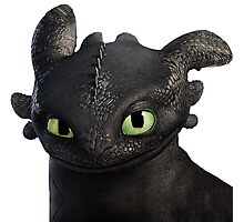How to Train Your Dragon 06 Photographic Print