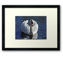 Misunderstood Swan Framed Print