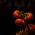 Halloween Fruit of the Vine - Pumpkin orange still life by Michael Taggart
