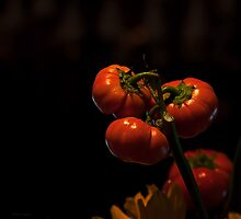 Halloween Fruit of the Vine - Pumpkin orange still life by Michael Taggart