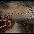 Harvest Moon by MarieG