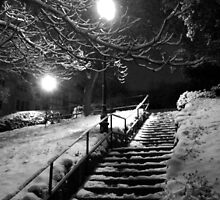Winter Staircase by Lord William Chard
