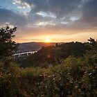 River Rhine sunset by SinaStraub