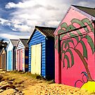 Beach Huts at Blairgowrie, Victoria by Pauline Tims