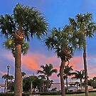 dancing palms by cliffordc1