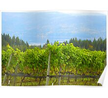 Grape Vines of Celista Poster