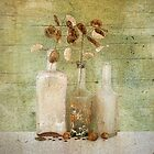 Glass & Seeds by Barbara Ingersoll