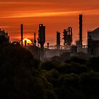 industrial sunset  by warren dacey
