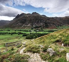 Langdale Fell by Mike Church