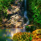 Tim Shea Falls... by Tracie Louise