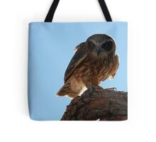 Boobook Owl in Broad Daylight Tote Bag
