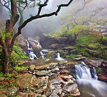 Dimosari canyon, Evia island by Hercules Milas