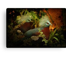 Two Victoria Crowned Pigeons in mystery forest Canvas Print