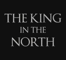 The King In The North by malapipa