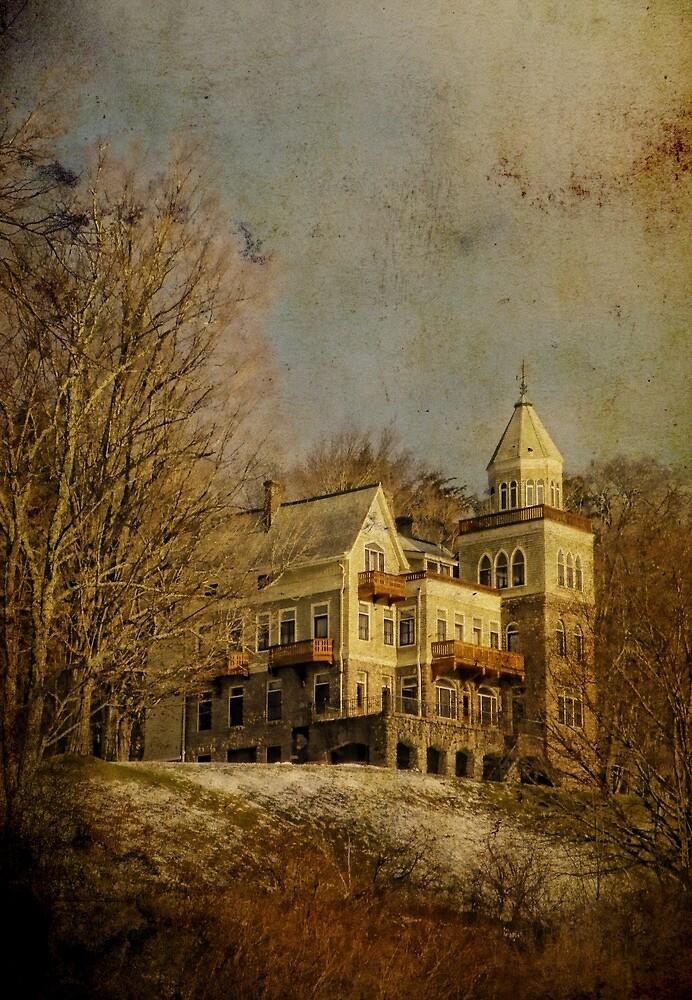 Forstmann Castle by PineSinger