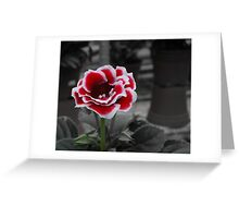 for the love of rose Greeting Card