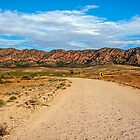 Outback Road by Ray Warren