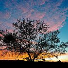 Outback Sunset by Ray Warren