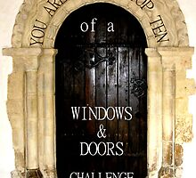 Window and door challenge by KatDoodling