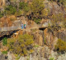 Cataract Gorge, Launceston, Tasmania #2 by Elaine Teague