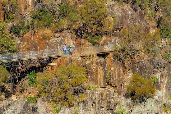Cataract Gorge, Launceston, Tasmania #2 by Elaine Teague