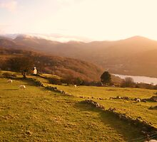 Wales, Snowdonia National Park. by SamanthaMirosch