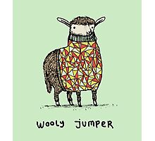 Wooly Jumper Photographic Print