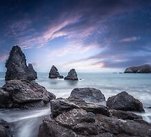 Lonely View by Raj Golawar