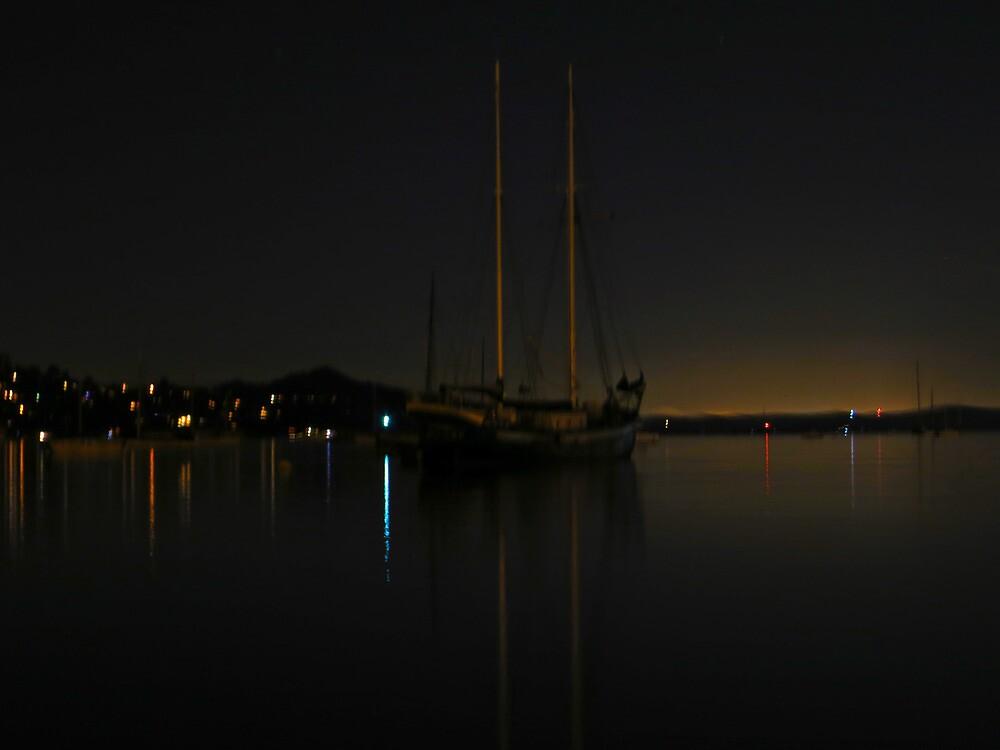 Sailing Ship  by David Denny