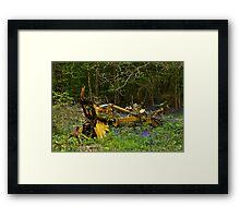 Woodland and Machine Framed Print