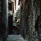 Street of steps Spoleto 198404090071 by Fred Mitchell