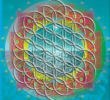Flower of Life Mandala by Sarah Niebank