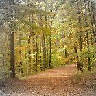 Rock Island in the Fall by GraNadur
