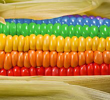 Rainbow Corn by Kitty Bitty