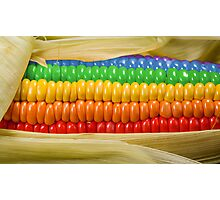 Rainbow Corn Photographic Print