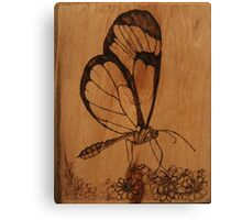 Pyrography: Glasswing Butterfly Canvas Print